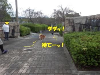 PA011363-1.jpg