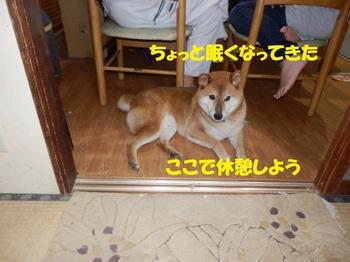PA011410-1.jpg